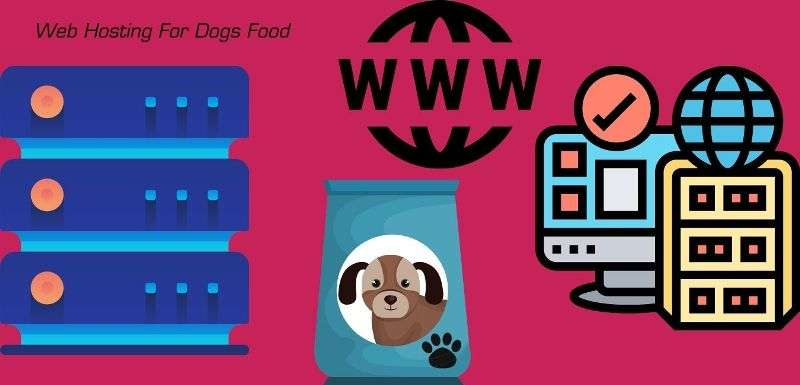 While Choosing Best Web Hosting Packages For Your Dogs Food Blog